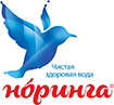логотип - норинга